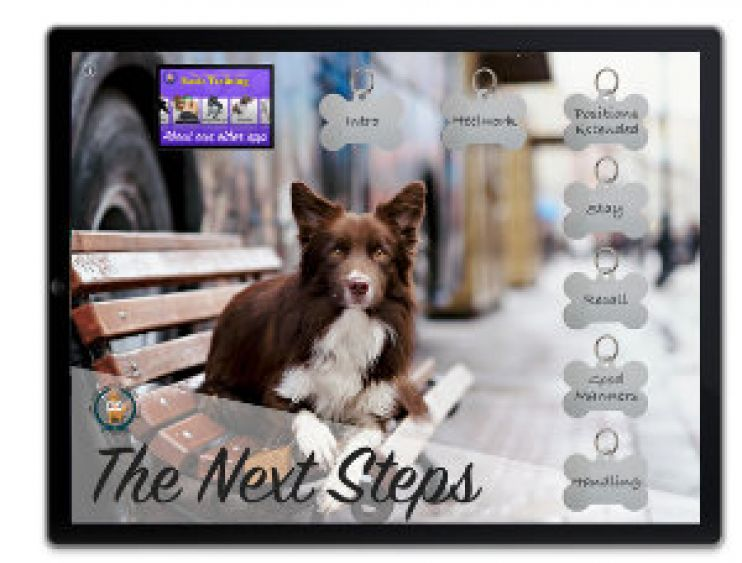 The Next Steps app from Crazy Daisy